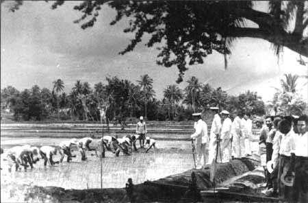 Forced Labor under Japanese on Guam
