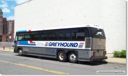 greyhound-bus-1